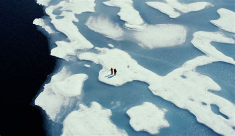 The best environmental films that might just save the