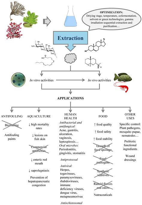 Marine Drugs   Free Full-Text   Antimicrobial Action of