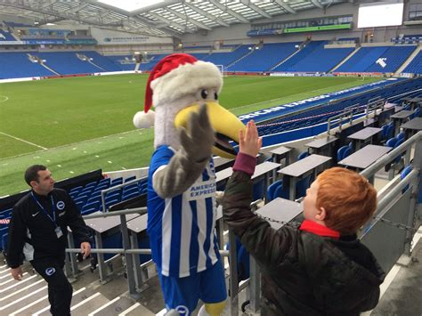 Brighton and Hove News » Young Seagulls party as Albion